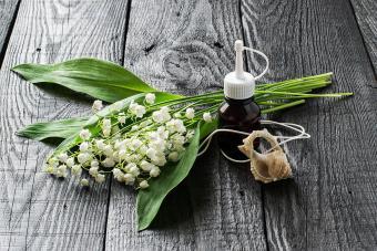 https://cf.ltkcdn.net/horoscopes/images/slide/234790-850x567-6-gemini-flower.jpg