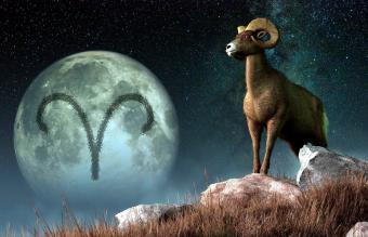 Aries Constellation: Myth and Meaning Behind the Ram