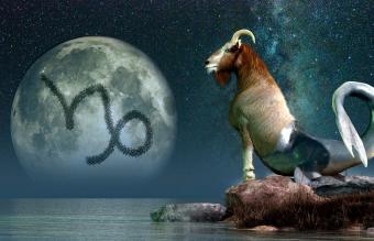 Capricorn sea goat
