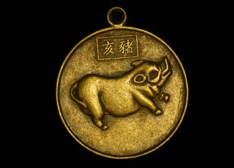 Chinese pig zodiac medal