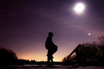Susan Miller's Astrology Journey