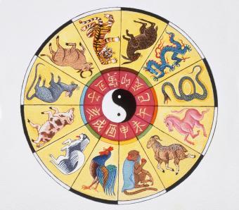 https://cf.ltkcdn.net/horoscopes/images/slide/253815-850x744-14-chinese-zodiac-signs.jpg