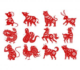 https://cf.ltkcdn.net/horoscopes/images/slide/253817-850x744-1-chinese-zodiac-signs.jpg