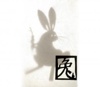 https://cf.ltkcdn.net/horoscopes/images/slide/253841-850x744-5-chinese-zodiac-signs.jpg
