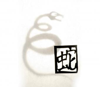 https://cf.ltkcdn.net/horoscopes/images/slide/253843-850x744-7-chinese-zodiac-signs.jpg
