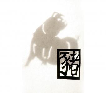 https://cf.ltkcdn.net/horoscopes/images/slide/253849-850x744-13-chinese-zodiac-signs.jpg