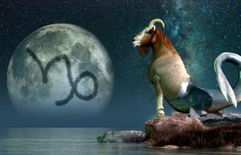What Animal Is Associated With the Zodiac Sign Capricorn?