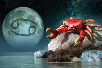 astrological cancer symbol of the crab