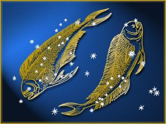 Pisces Animal Sign and Its Connection to the Zodiac