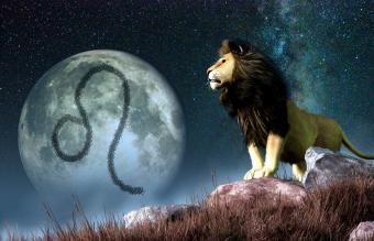Moon in Leo Signs Display Enthusiasm and a Spirit of Adventure