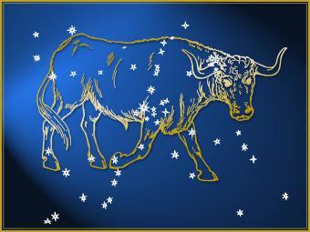 Taurus astrological sign
