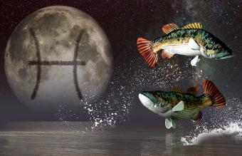 Moon in Pisces Personalities Integrate Creativity and Emotion