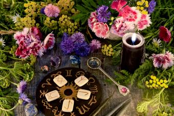 Horoscope Signs and Flowers