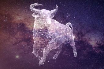 https://cf.ltkcdn.net/horoscopes/images/slide/278928-850x566-zodiac-sign-matches-taurus.jpg