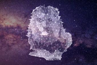 https://cf.ltkcdn.net/horoscopes/images/slide/278931-850x566-zodiac-sign-matches-leo.jpg