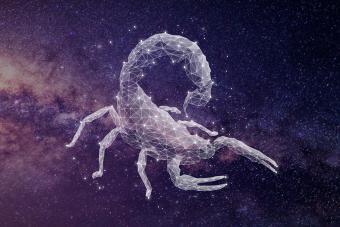https://cf.ltkcdn.net/horoscopes/images/slide/278934-850x566-zodiac-sign-matches-scorpio.jpg
