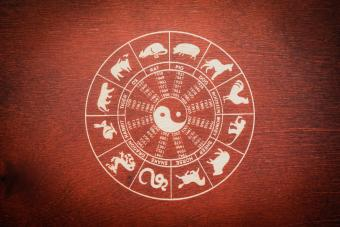 Chinese Astrology Signs: What Impacts Compatibility?
