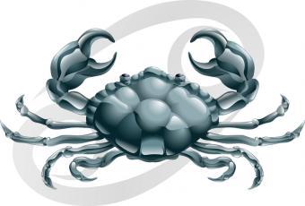 https://cf.ltkcdn.net/horoscopes/images/slide/55053-800x540-Canc.jpg