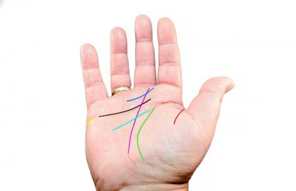 Colorful Lines Marked On Palm