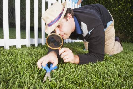 Perfectionist man cutting grass with scissors