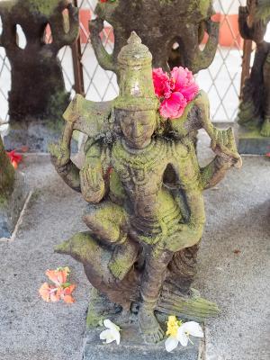 Statue of deity Shani