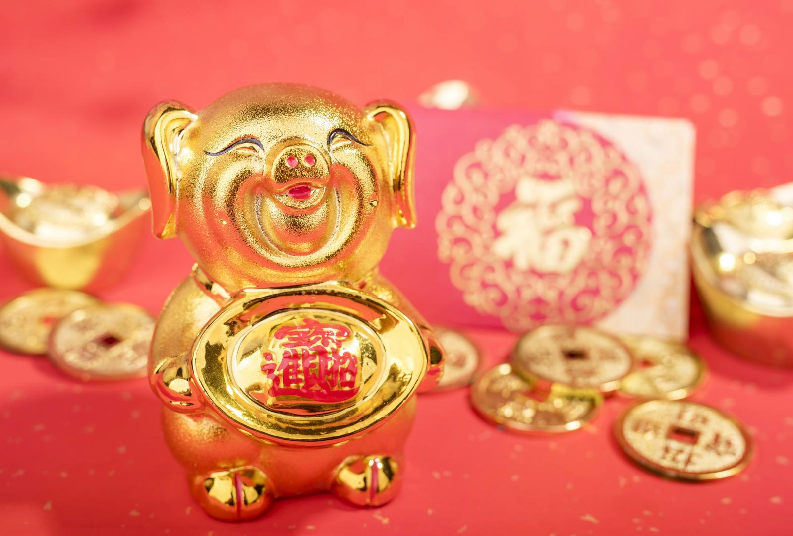 Golden pig statue on red background
