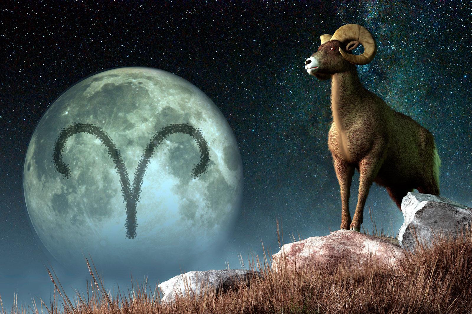 aries-horoscopo-signo.jpg