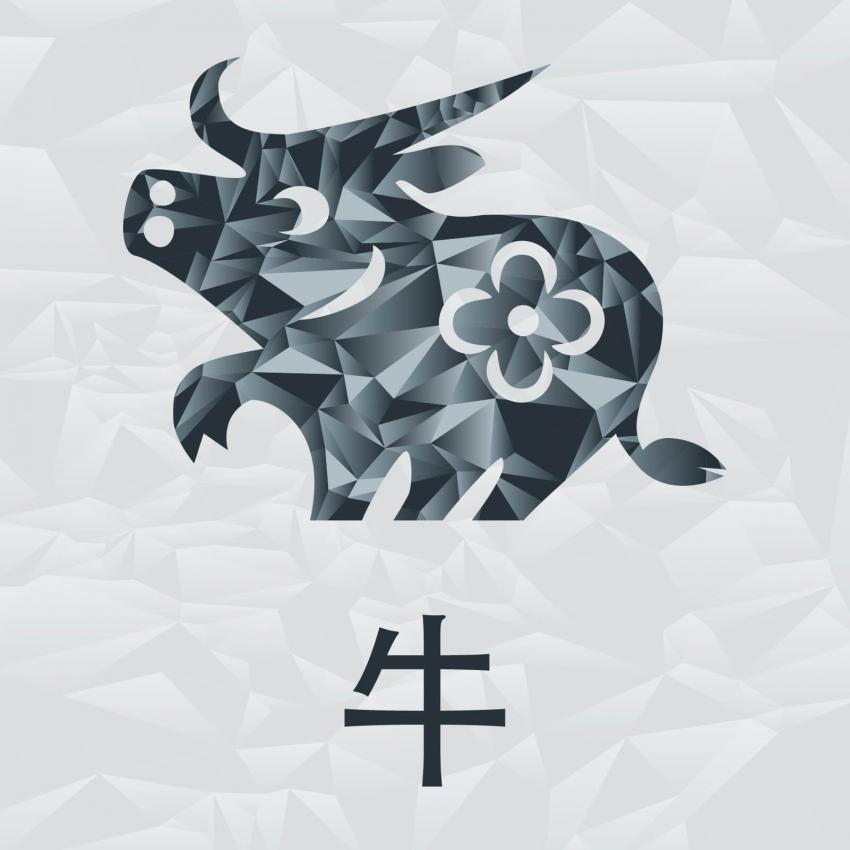 https://cf.ltkcdn.net/horoscopos/images/slide/245127-850x850-chinese-zodiac-signs-02.jpg