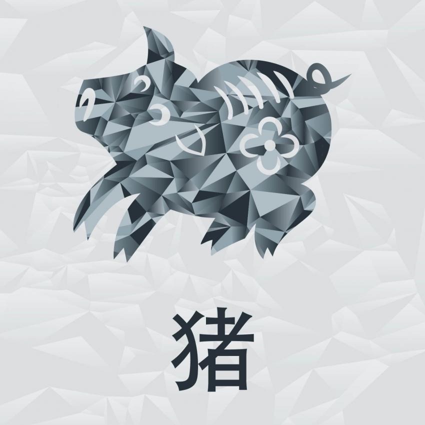 https://cf.ltkcdn.net/horoscopos/images/slide/245138-850x850-chinese-zodiac-signs-12.jpg