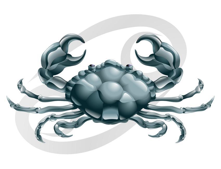 https://cf.ltkcdn.net/horoscopos/images/slide/245504-850x652-Cancer.jpg