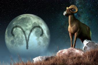 Aries horóscopo signo
