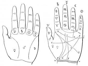 Como leer la palma de la mano