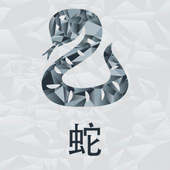 https://cf.ltkcdn.net/horoscopos/images/slide/245133-850x850-chinese-zodiac-signs-06.jpg