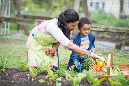 madre e hijo recogiendo verduras