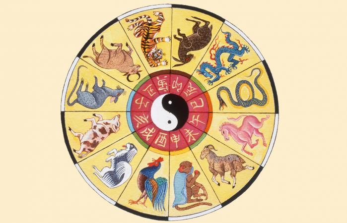 Rueda del horóscopo astrológico chino
