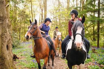 Riders on horses