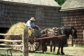 https://cf.ltkcdn.net/horses/images/slide/232360-850x569-wagon.jpg