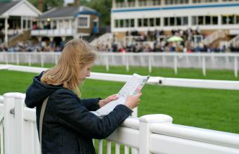 Horse Racing for Beginners