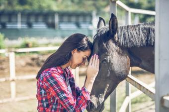 133 Cute Horse Names That Are Irresistibly Endearing