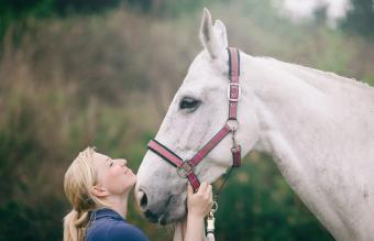135 White Horse Names From Elegant to Fun