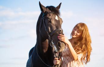 120+ Black Horse Names From Powerful to Sweet