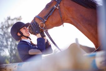 150+ Unforgettable Horse Show Names to Inspire You
