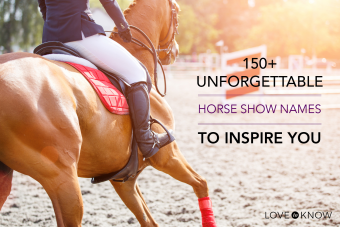 150+ horse show names