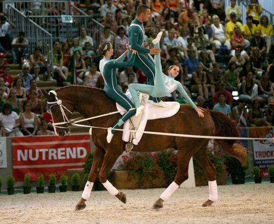 World vaulting championship