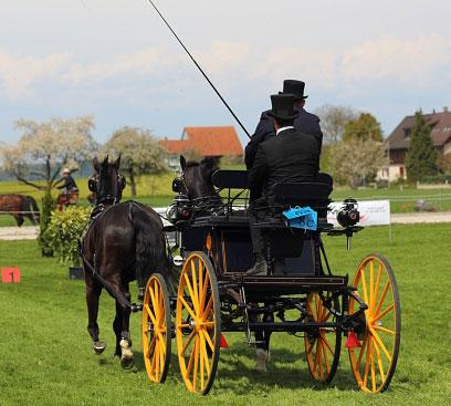 Men Driving Horse Carriage