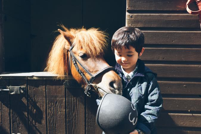 boy standing next to a pony
