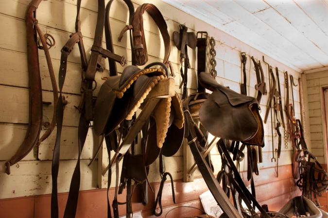 Saddlery wall stocked with horse gear