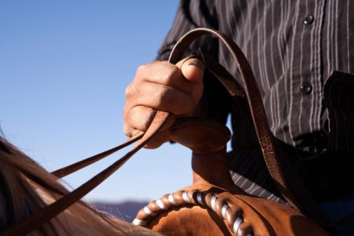 Man holding the reins of horse