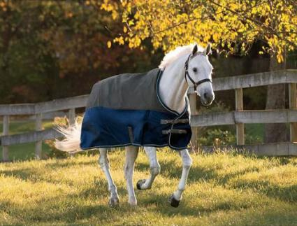 NorthWind by Dover Saddlery Light Turnout Blanket