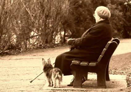 Elderly lady and dog in a park